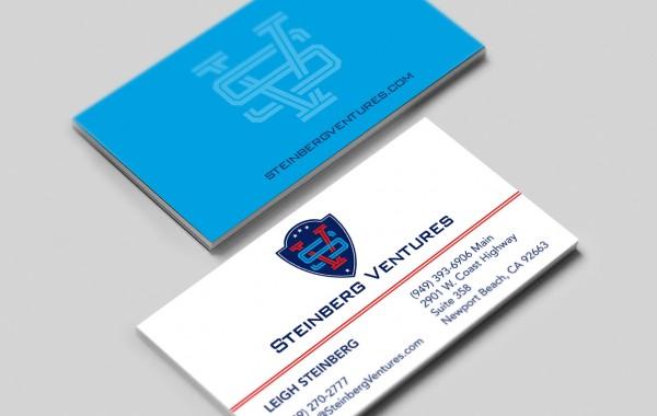 Steinberg Ventures